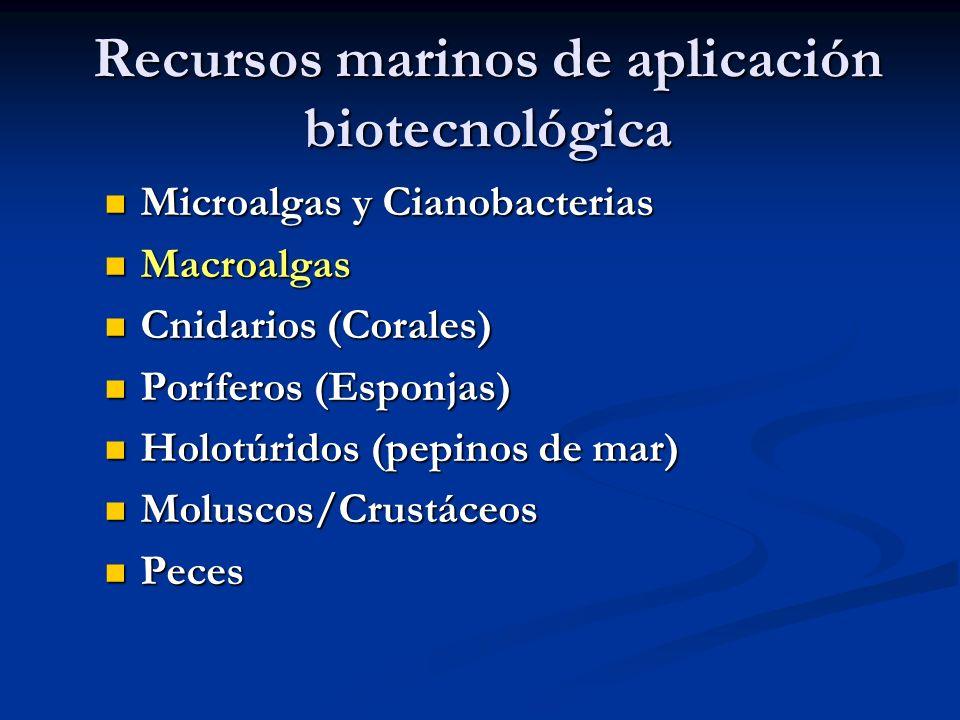 Recursos marinos de aplicación biotecnológica