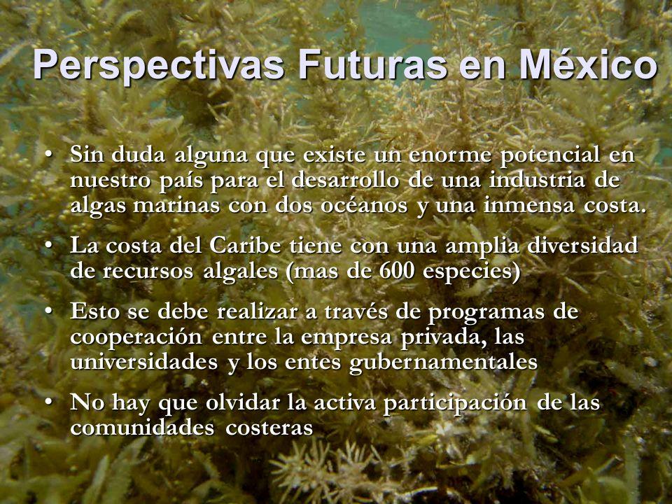 Perspectivas Futuras en México