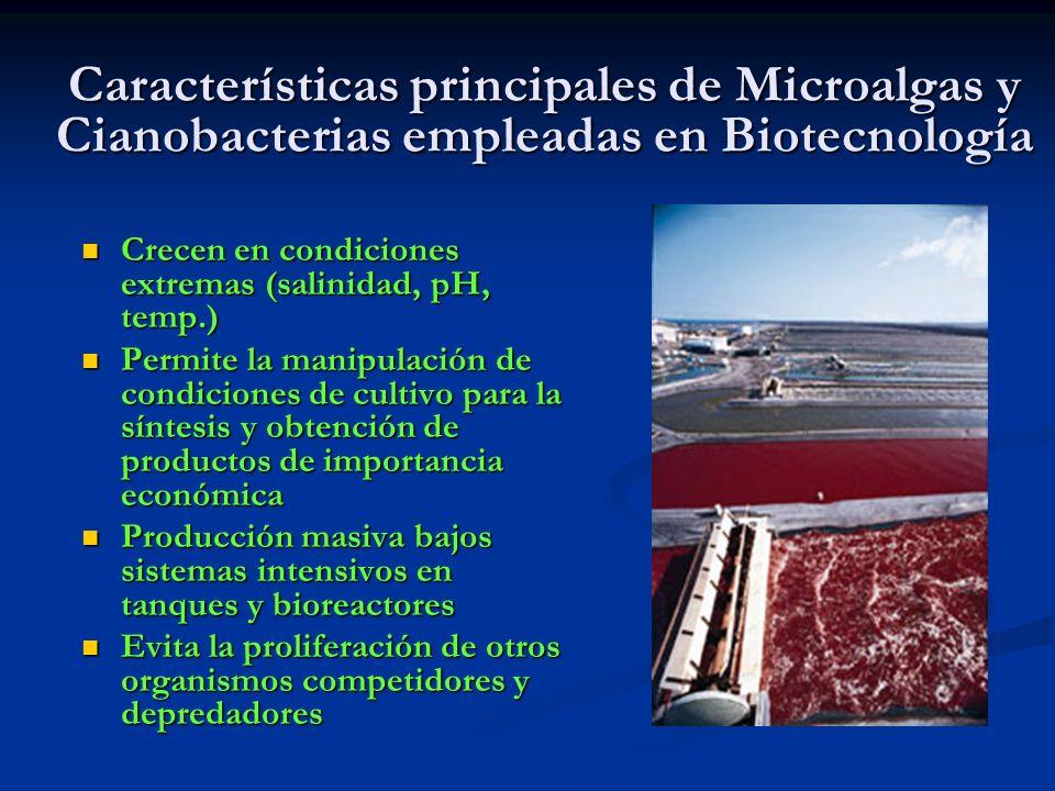 Características principales de Microalgas y Cianobacterias empleadas en Biotecnología
