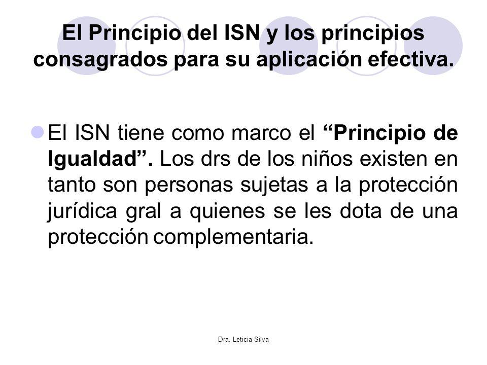 El Principio del ISN y los principios consagrados para su aplicación efectiva.