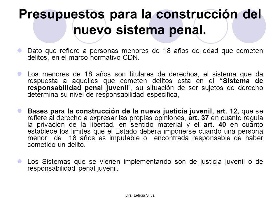 Presupuestos para la construcción del nuevo sistema penal.