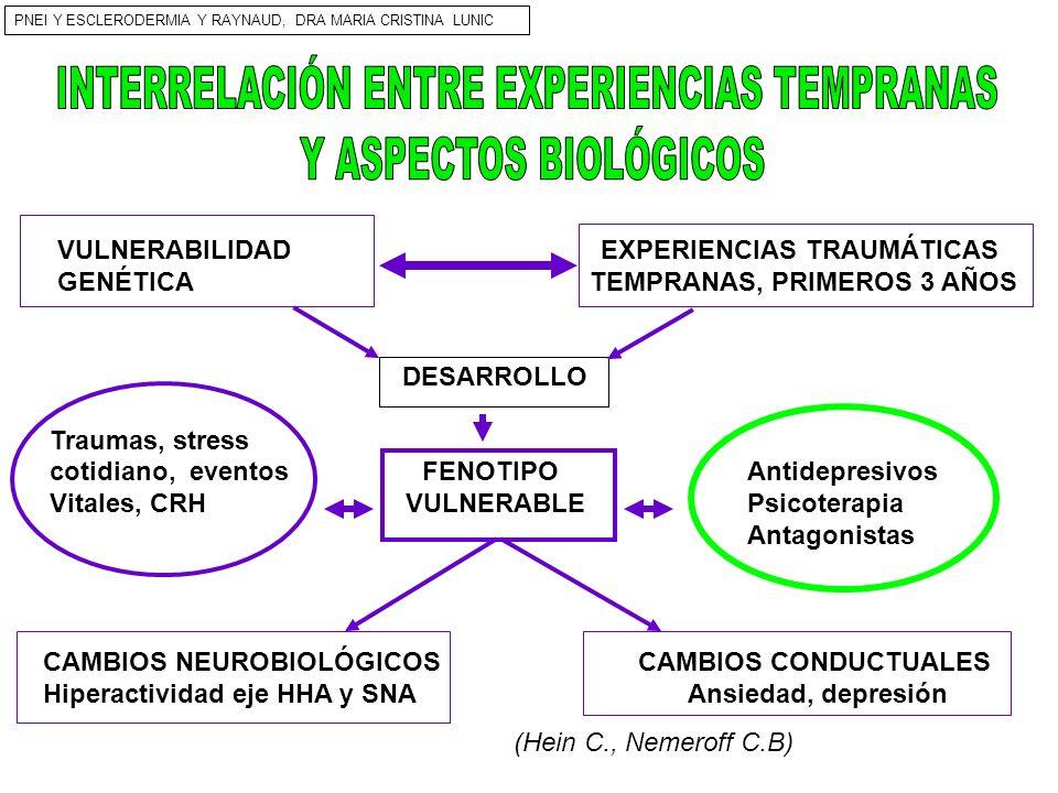 INTERRELACIÓN ENTRE EXPERIENCIAS TEMPRANAS