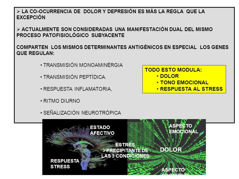 DOLOR TODO ESTO MODULA: DOLOR TONO EMOCIONAL RESPUESTA AL STRESS