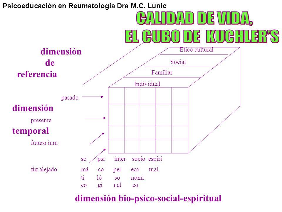 CALIDAD DE VIDA, EL CUBO DE KUCHLER'S dimensión de referencia pasado