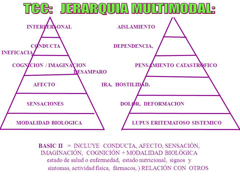 TCC: JERARQUIA MULTIMODAL: