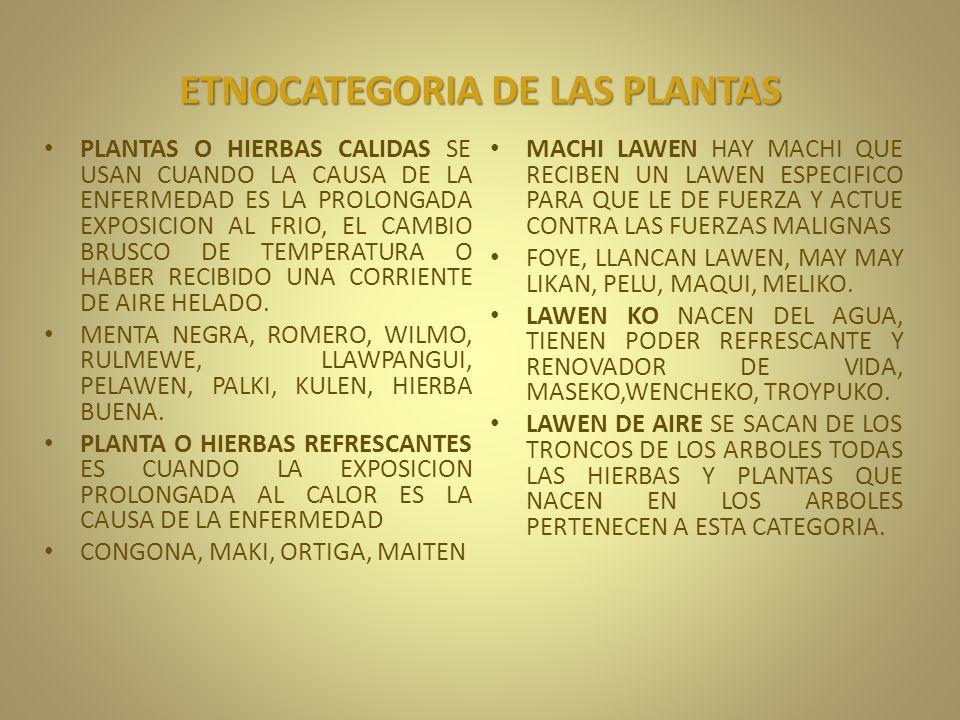 ETNOCATEGORIA DE LAS PLANTAS