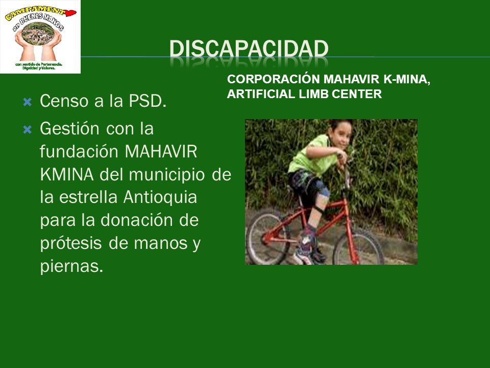 DISCAPACIDAD Censo a la PSD.
