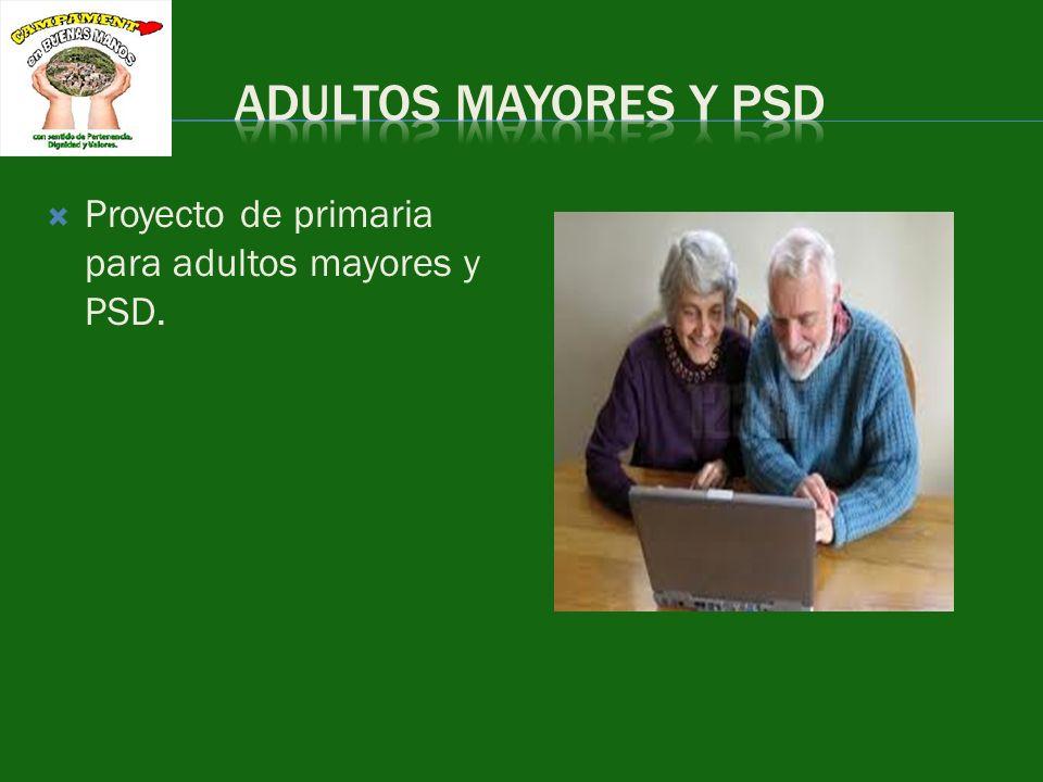 ADULTOS MAYORES Y PSD Proyecto de primaria para adultos mayores y PSD.
