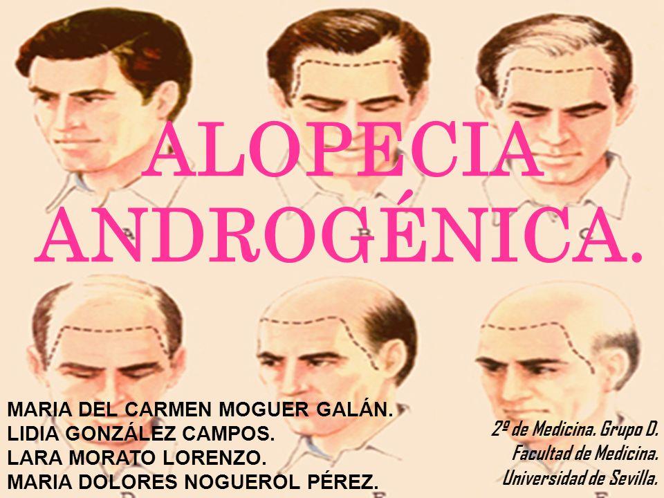 2º de Medicina. Grupo D. Facultad de Medicina. Universidad de Sevilla.
