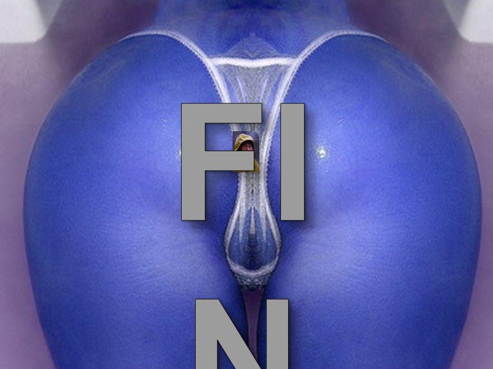 FIN B