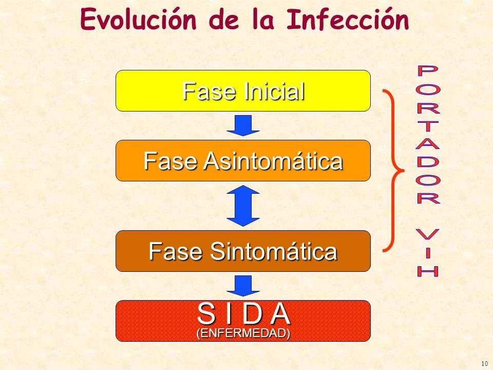 Evolución de la Infección