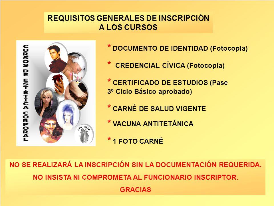 * DOCUMENTO DE IDENTIDAD (Fotocopia)