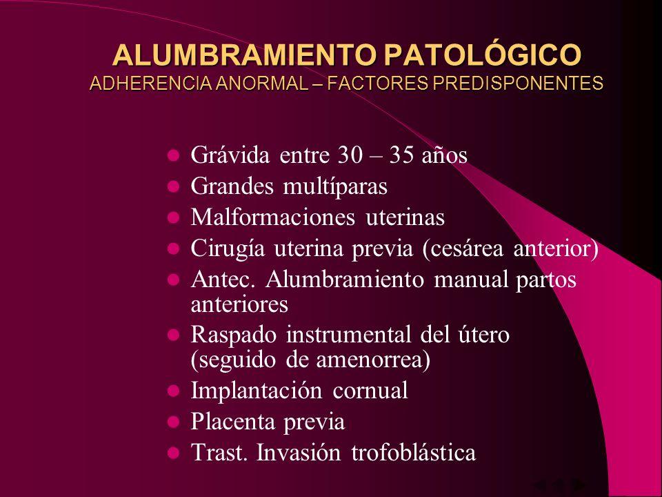 ALUMBRAMIENTO PATOLÓGICO ADHERENCIA ANORMAL – FACTORES PREDISPONENTES