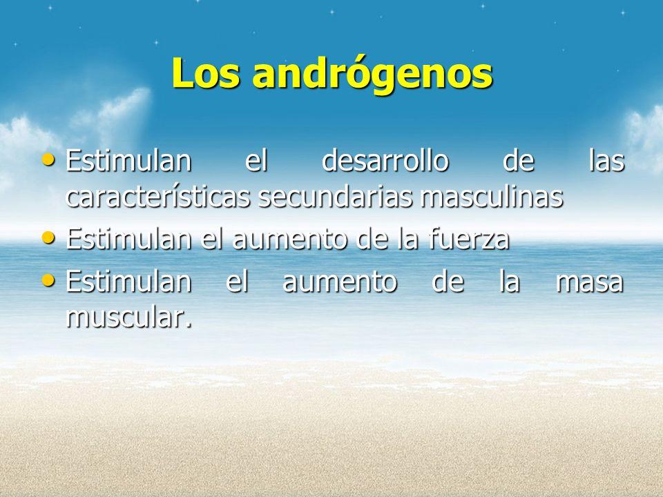 Los andrógenos Estimulan el desarrollo de las características secundarias masculinas. Estimulan el aumento de la fuerza.