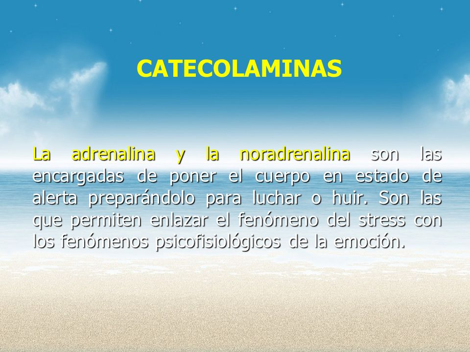 CATECOLAMINAS