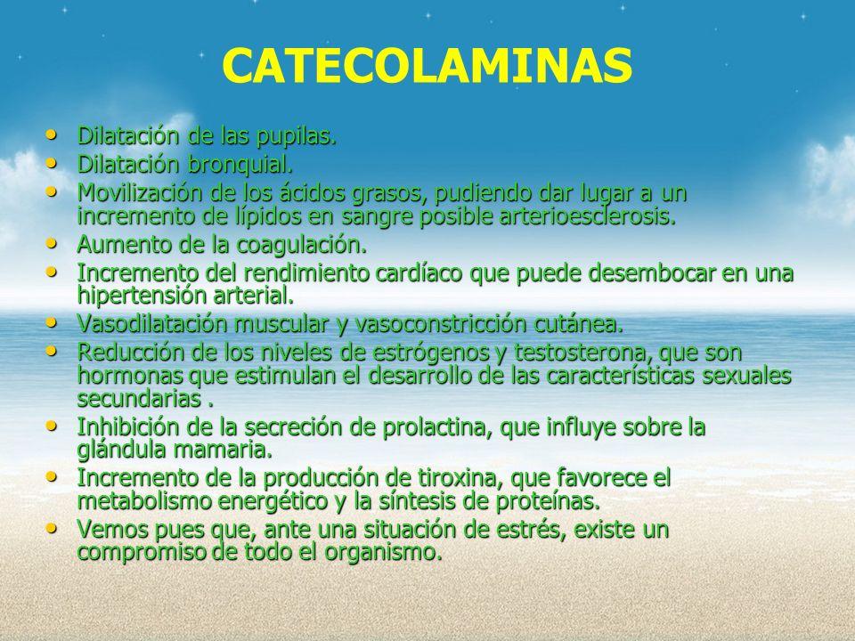 CATECOLAMINAS Dilatación de las pupilas. Dilatación bronquial.