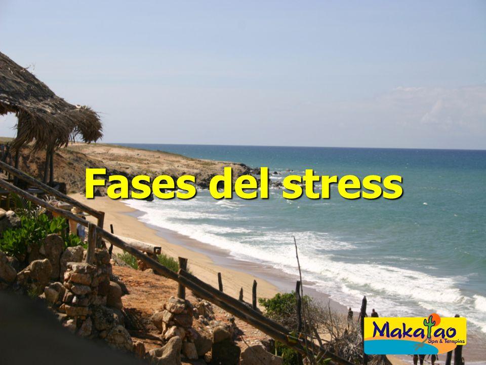 Fases del stress