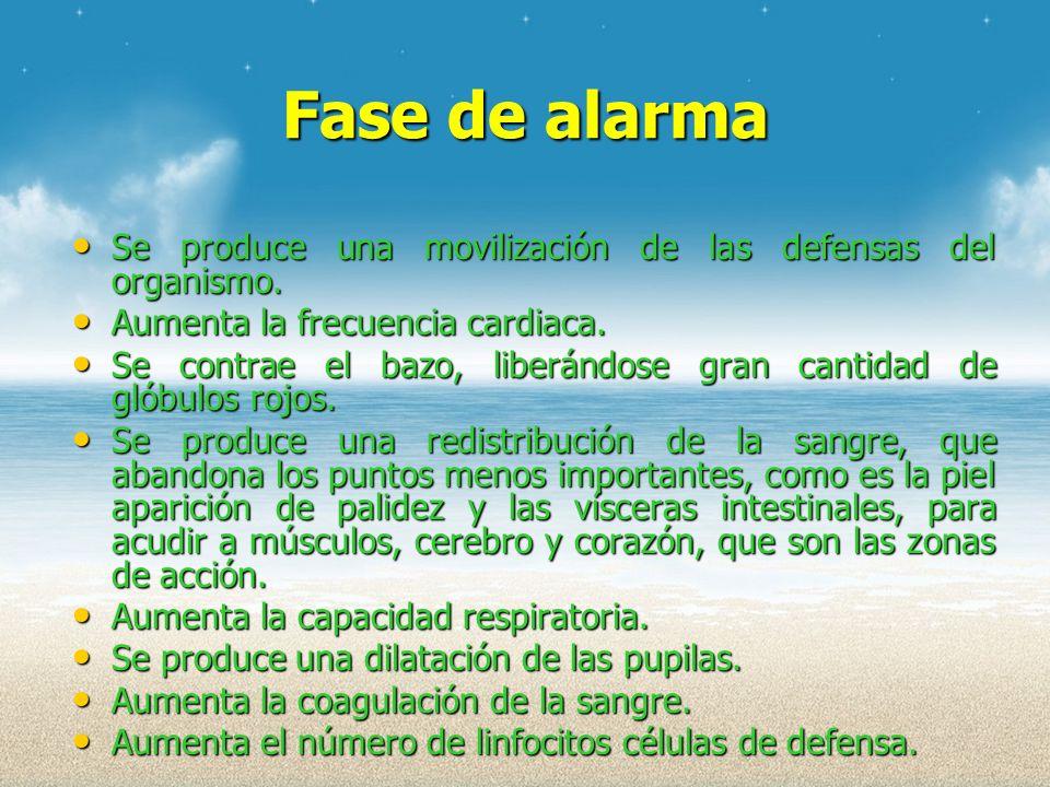 Fase de alarma Se produce una movilización de las defensas del organismo. Aumenta la frecuencia cardiaca.