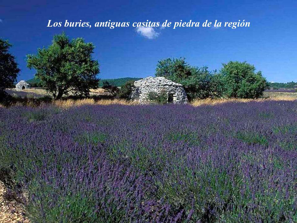 Los buries, antiguas casitas de piedra de la región