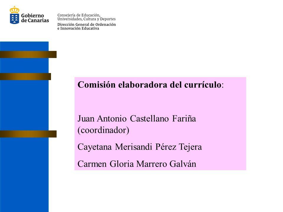 Comisión elaboradora del currículo: