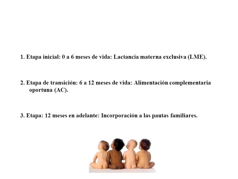 1. Etapa inicial: 0 a 6 meses de vida: Lactancia materna exclusiva (LME).