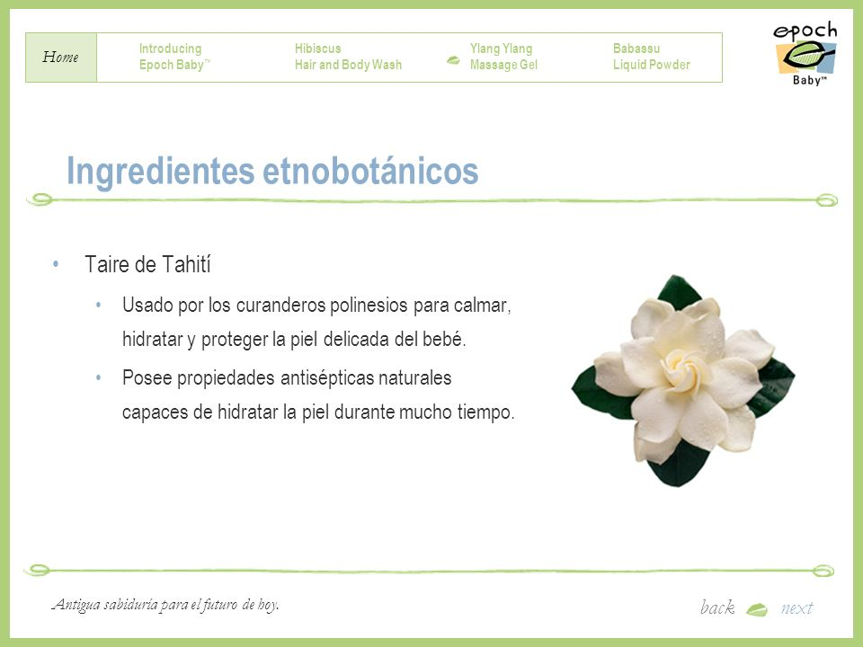 Ingredientes etnobotánicos