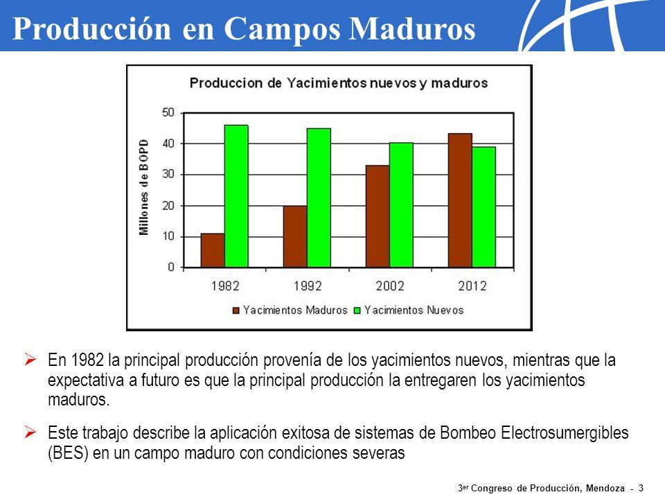 Producción en Campos Maduros