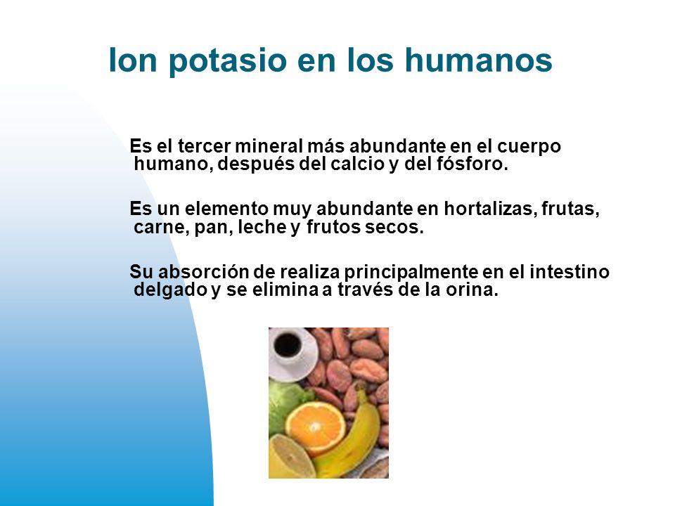 Ion potasio en los humanos