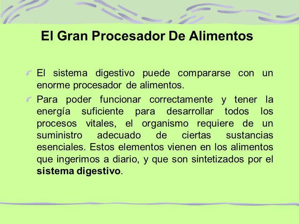 Sistema digestivo q f pamela berrios ossa ppt descargar for Que es un procesador de alimentos