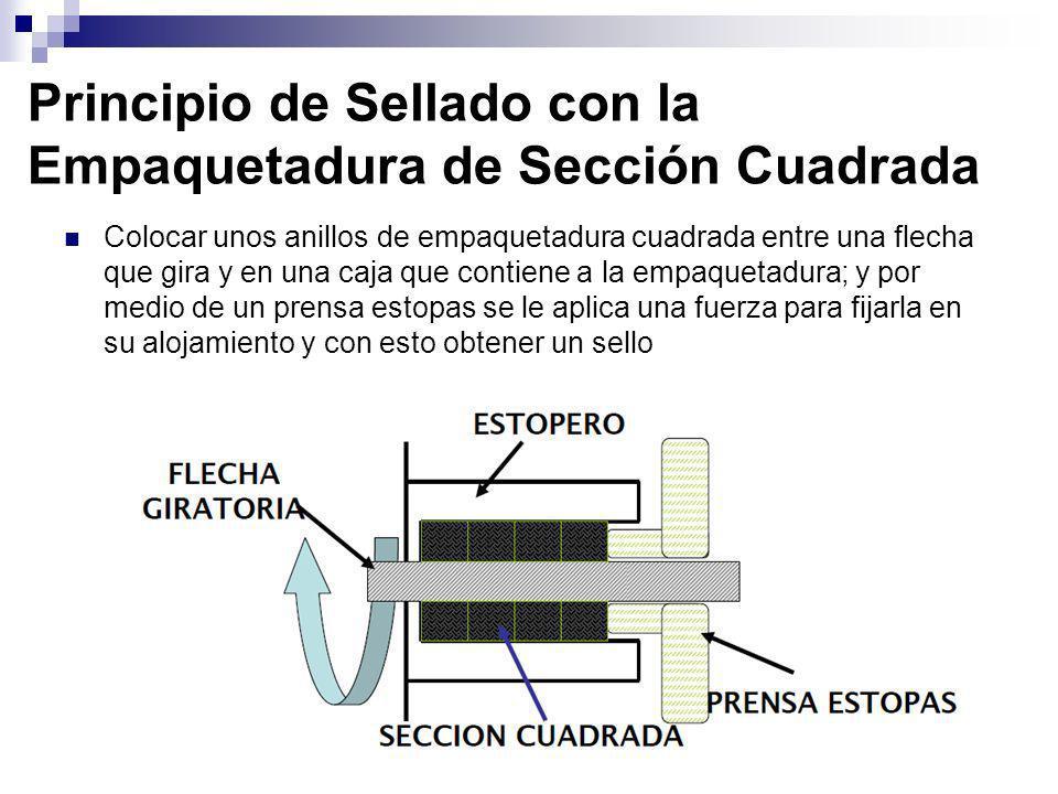 Principio de Sellado con la Empaquetadura de Sección Cuadrada