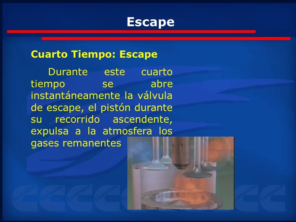 Escape Cuarto Tiempo: Escape