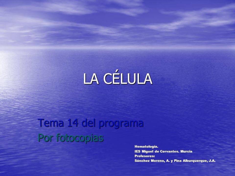 Tema 14 del programa Por fotocopias