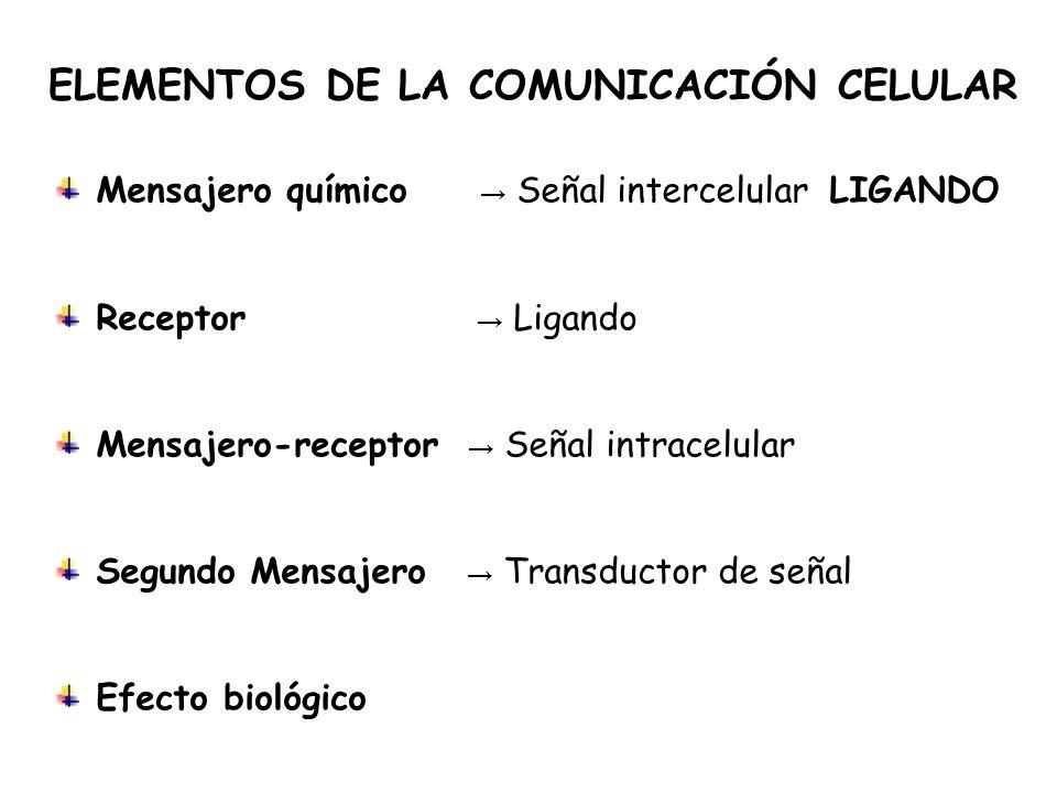 ELEMENTOS DE LA COMUNICACIÓN CELULAR