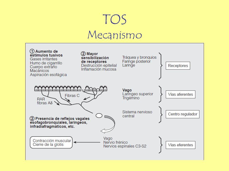 TOS Mecanismo