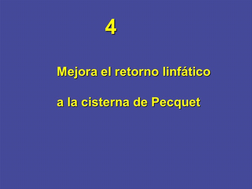 4 Mejora el retorno linfático a la cisterna de Pecquet