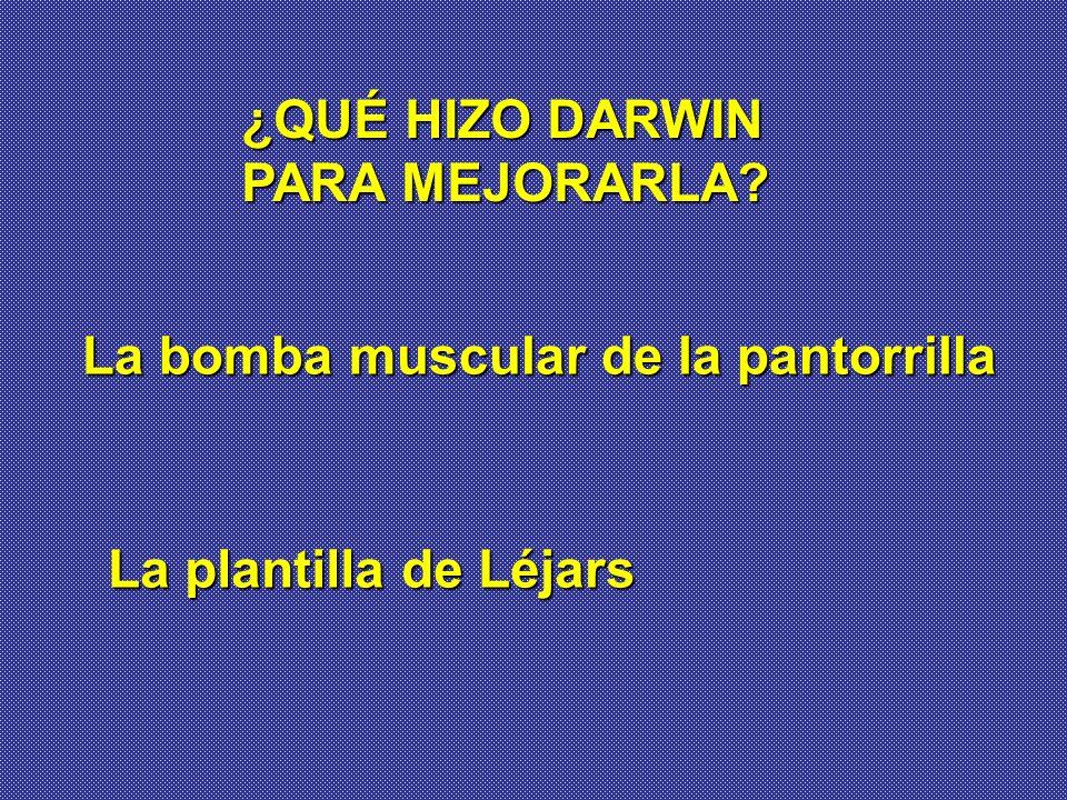 ¿QUÉ HIZO DARWIN PARA MEJORARLA La bomba muscular de la pantorrilla La plantilla de Léjars