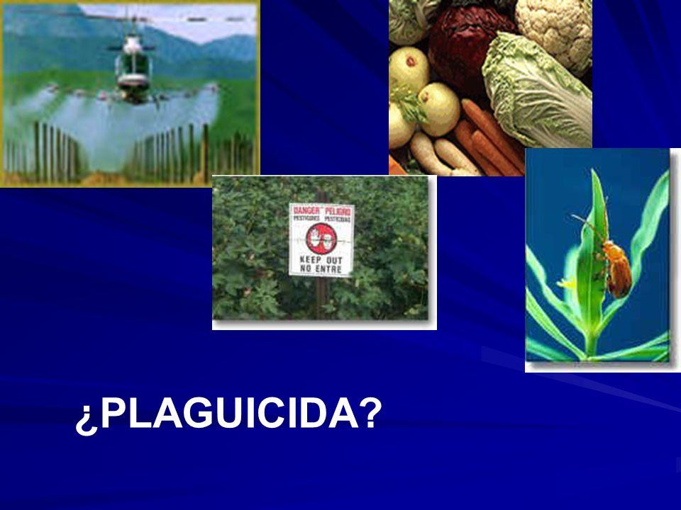 ¿PLAGUICIDA