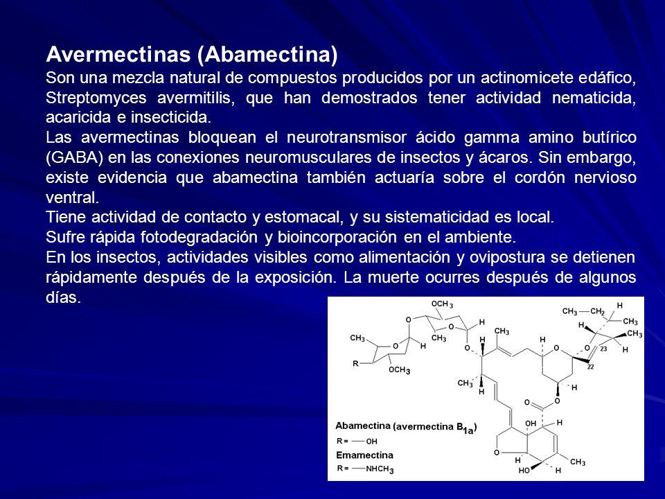 Avermectinas (Abamectina)