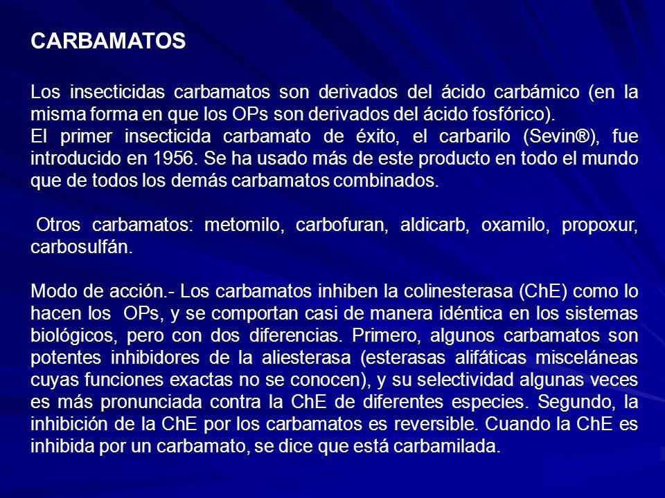 CARBAMATOS Los insecticidas carbamatos son derivados del ácido carbámico (en la misma forma en que los OPs son derivados del ácido fosfórico).