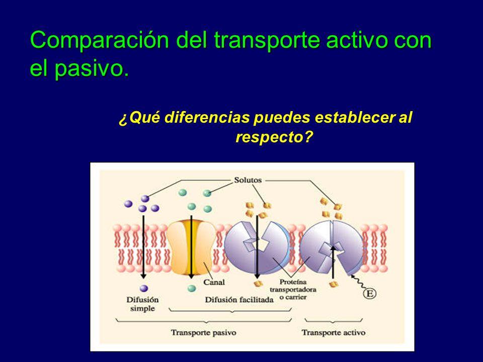 Comparación del transporte activo con el pasivo.