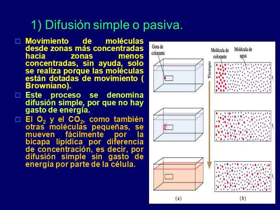 1) Difusión simple o pasiva.