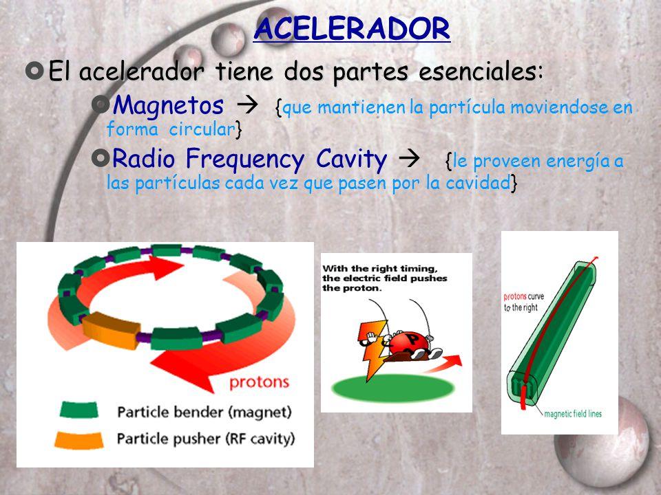 ACELERADOR El acelerador tiene dos partes esenciales: