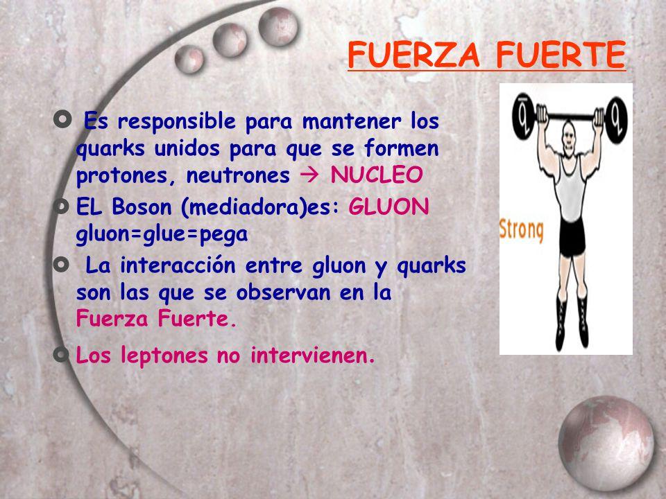 FUERZA FUERTE Es responsible para mantener los quarks unidos para que se formen protones, neutrones  NUCLEO.