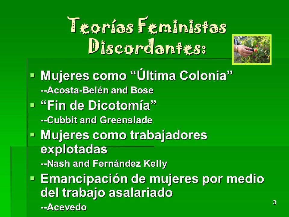 Teorías Feministas Discordantes: