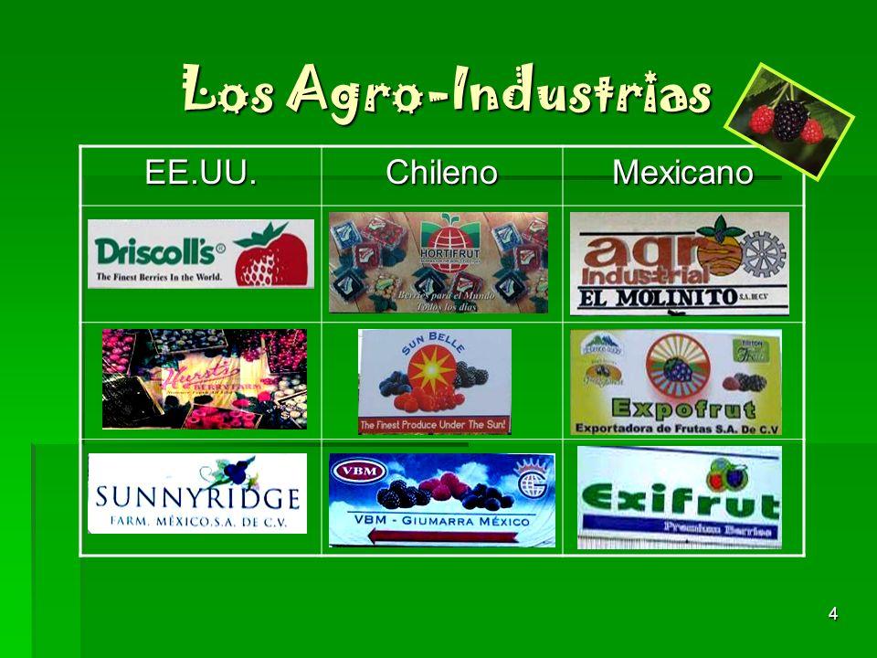 Los Agro-Industrias EE.UU. Chileno Mexicano