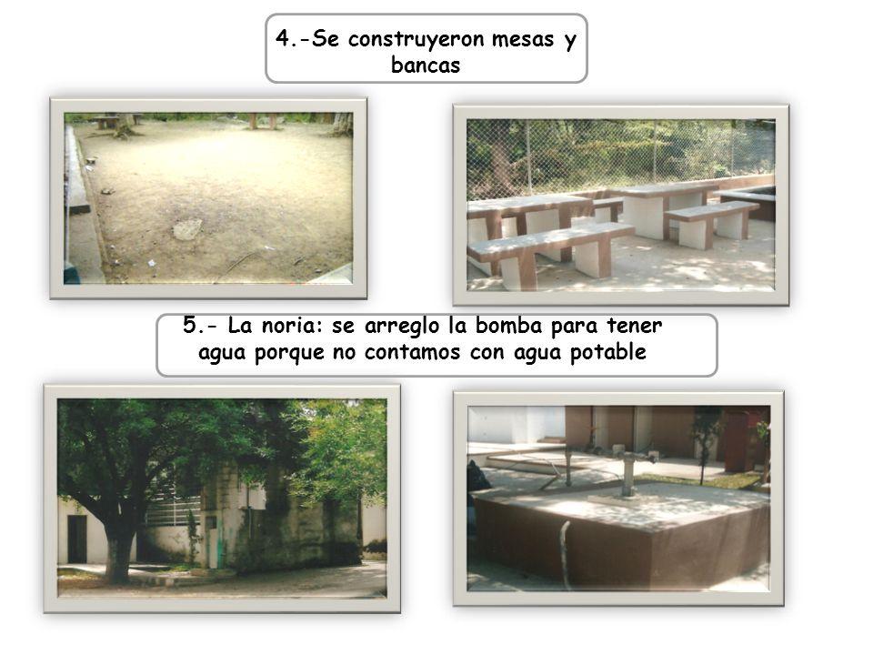 4.-Se construyeron mesas y bancas