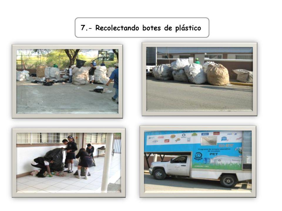 7.- Recolectando botes de plástico