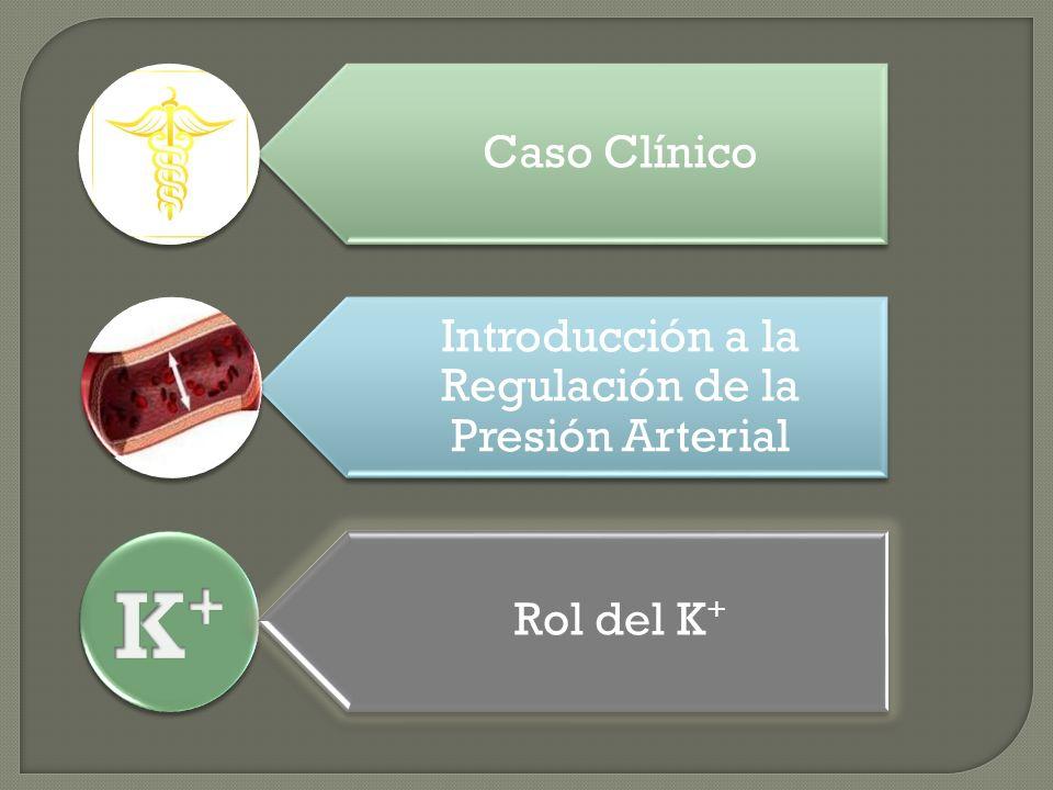 Introducción a la Regulación de la Presión Arterial