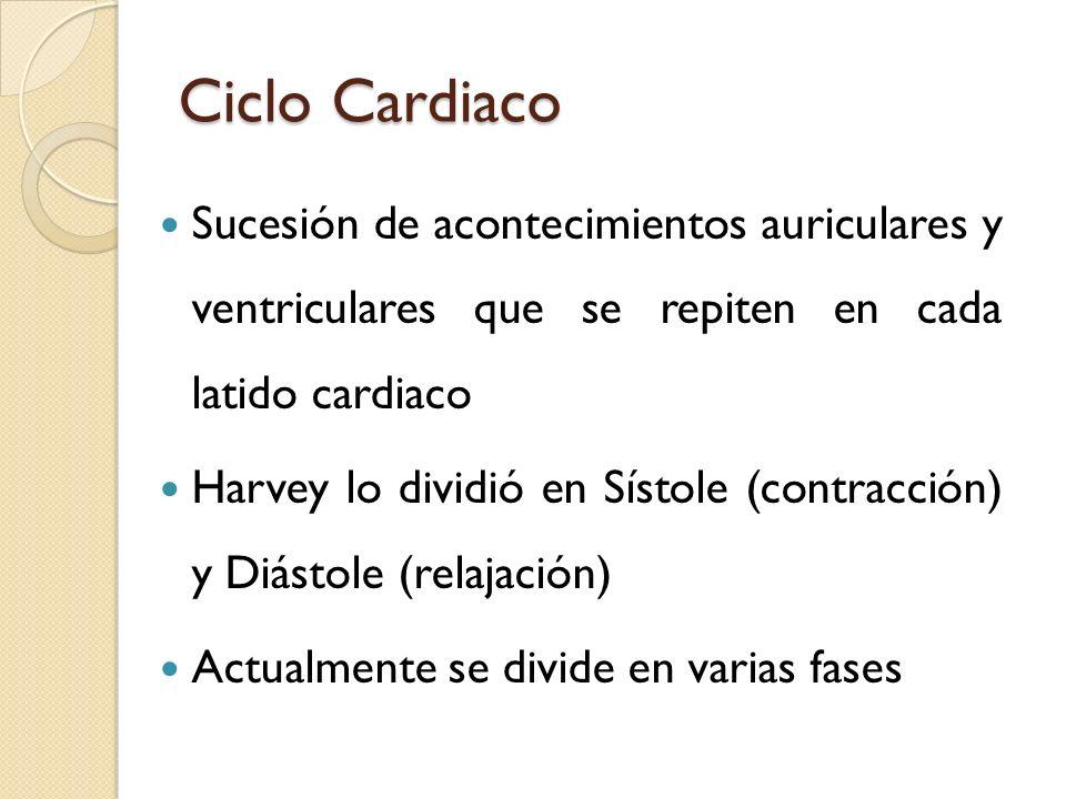 Ciclo Cardiaco Sucesión de acontecimientos auriculares y ventriculares que se repiten en cada latido cardiaco.