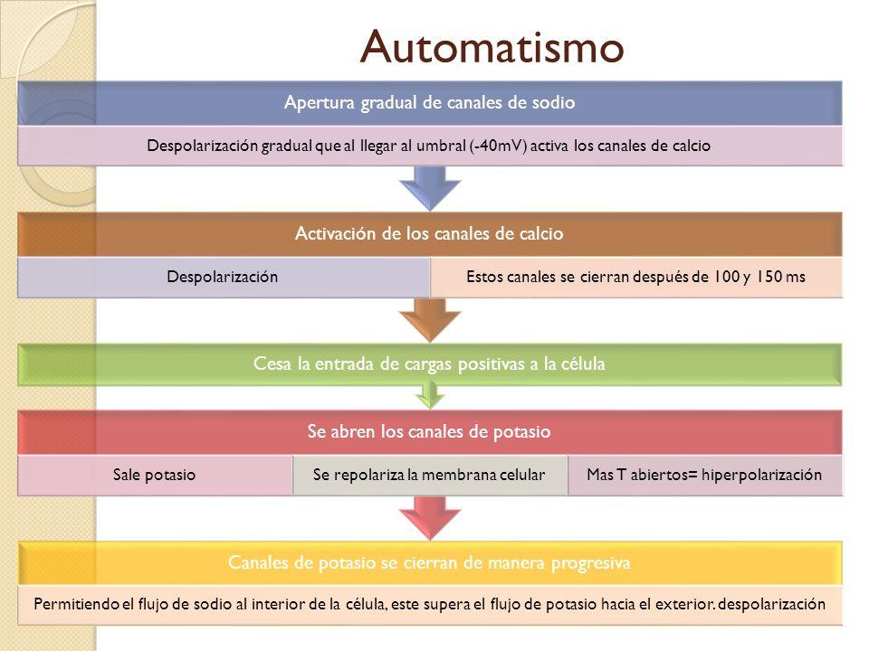Automatismo Apertura gradual de canales de sodio